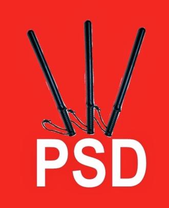 Sursa imaginii: http://www.analizeeconomice.ro/2013/10/da-ponta-cu-pulanu-n-mine-ca-te-am-votat.html